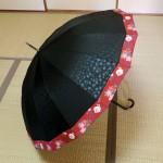 和柄の縁どりがオシャレなジャンプ式の晴雨兼用16本骨傘☆